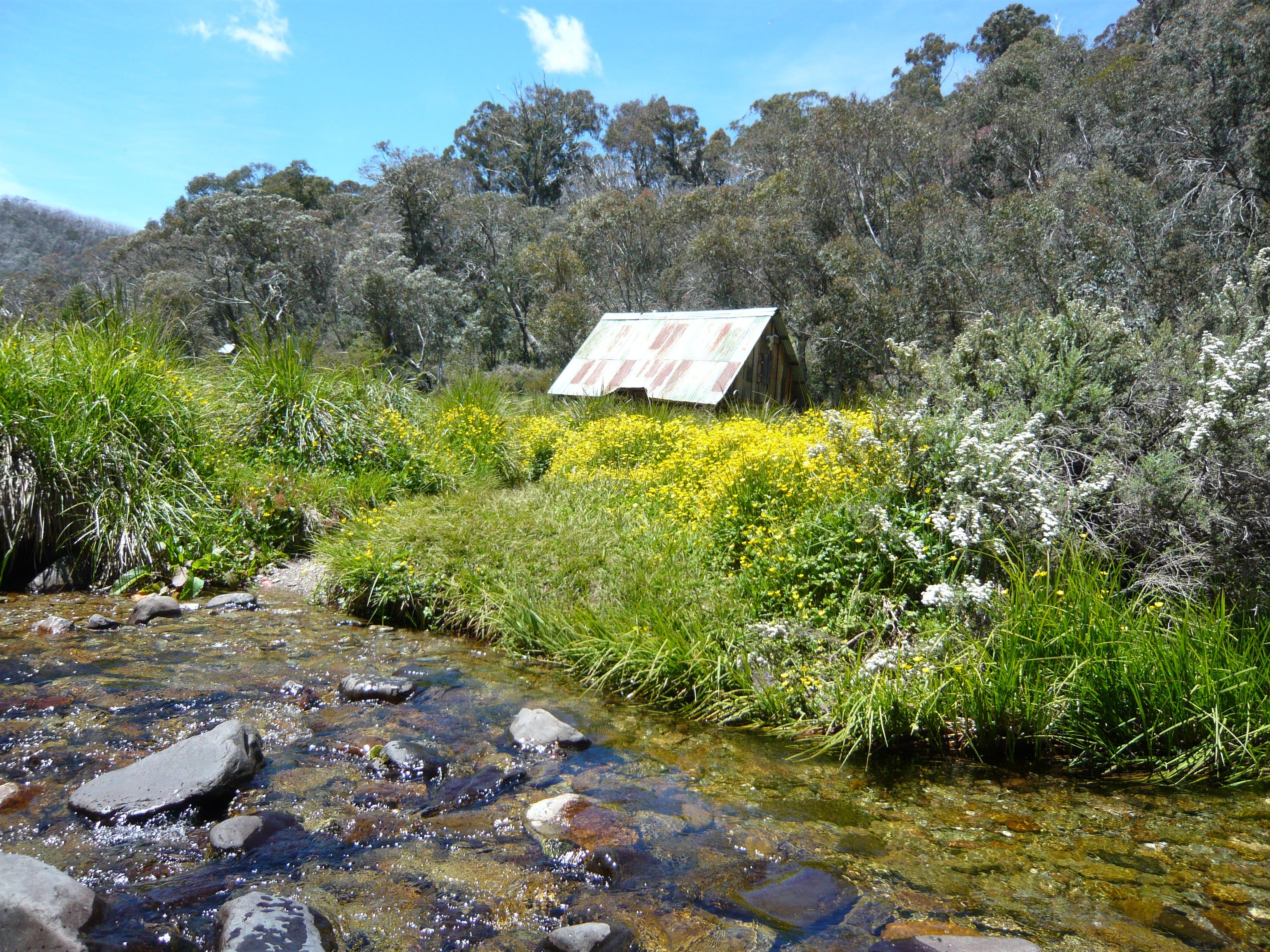 Hedonistic Hiking's Falls Creek to Hotham - Restaurants Sydney