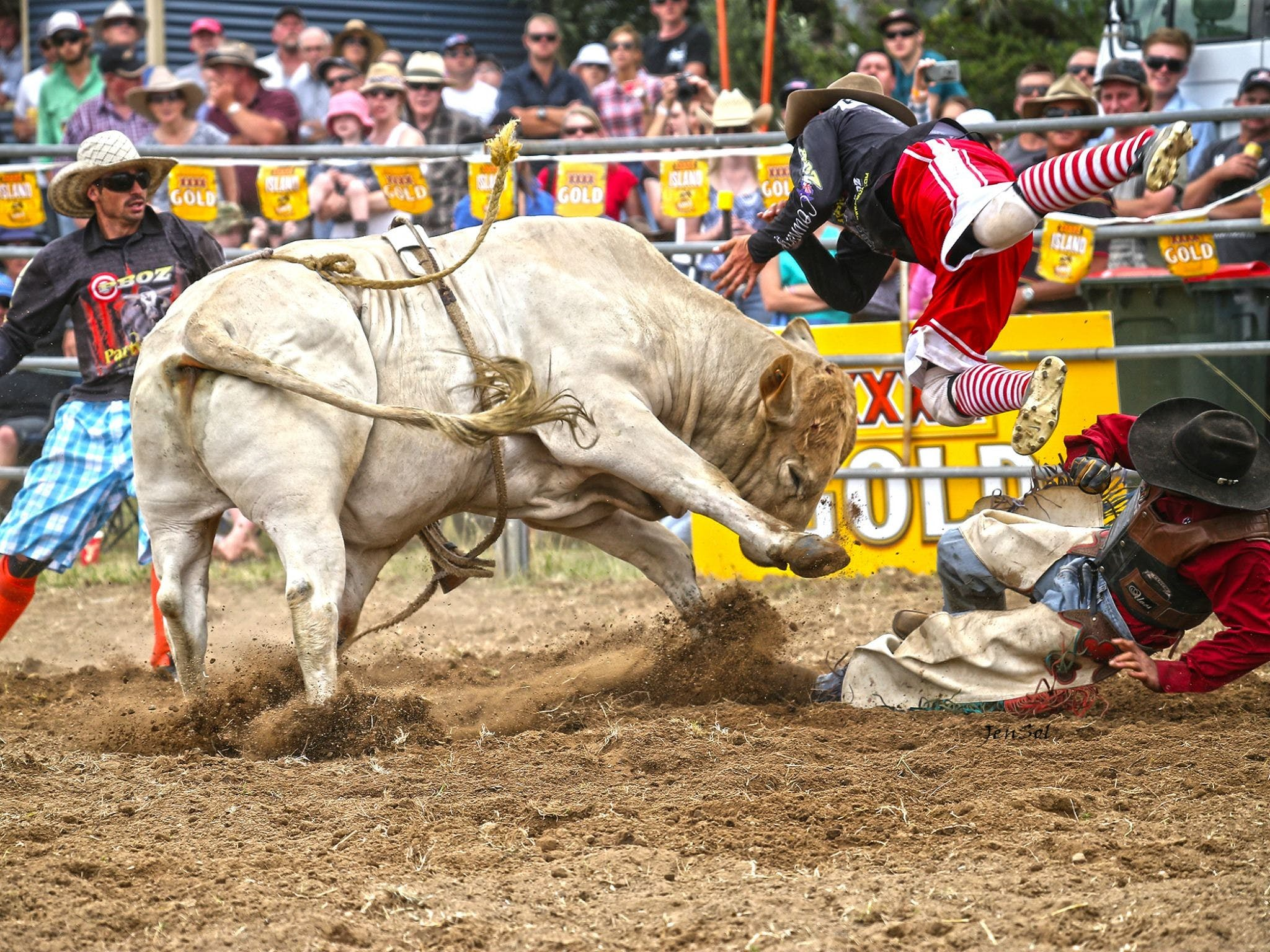 Jindabyne's Man From Snowy River Rodeo - Restaurants Sydney