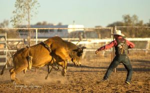 Walgett Charity Bushman's Carnival Rodeo and Campdraft - Restaurants Sydney