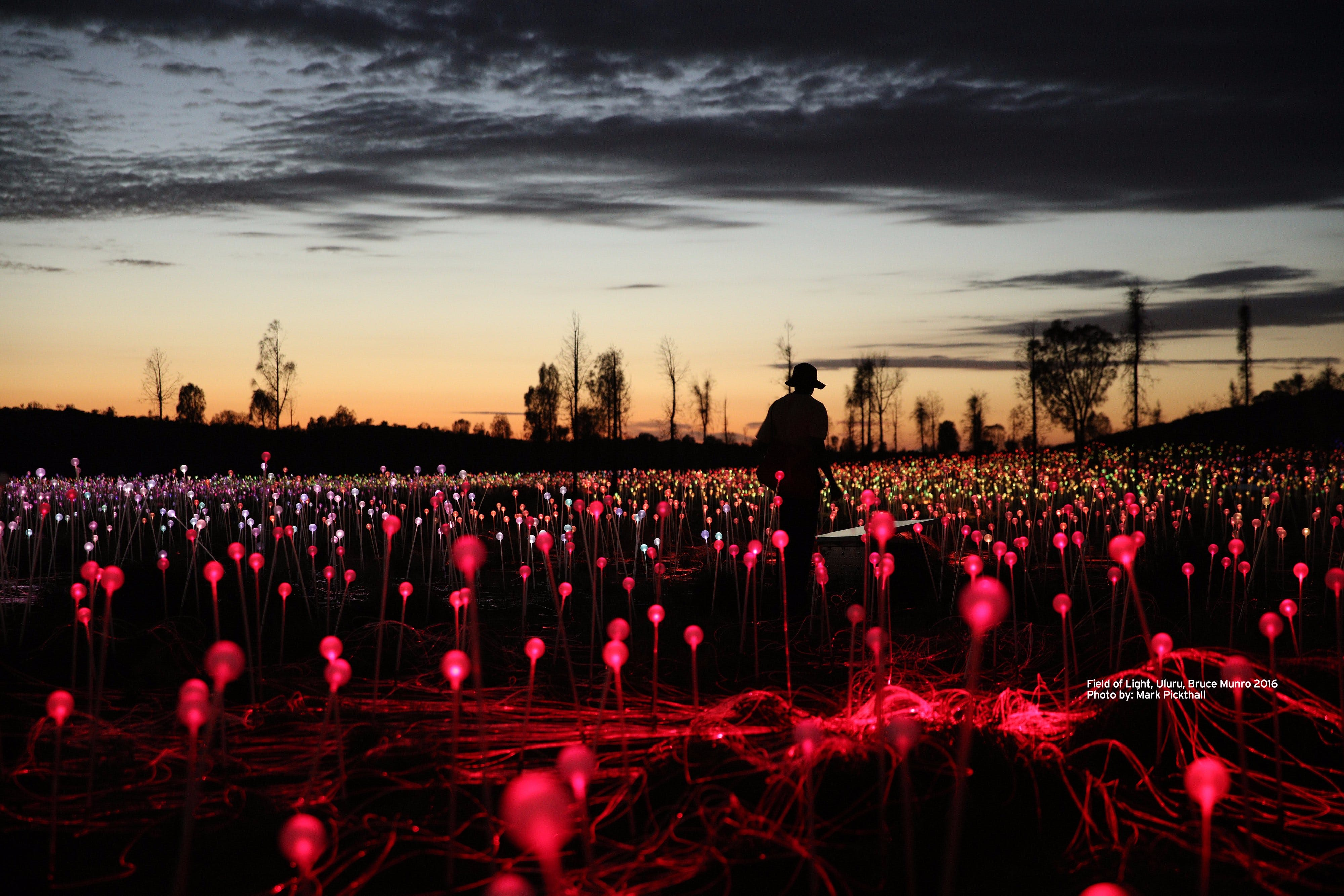 Field of Light Uluru - Restaurants Sydney