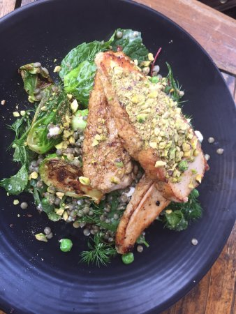 The Pond Cafe - Restaurants Sydney