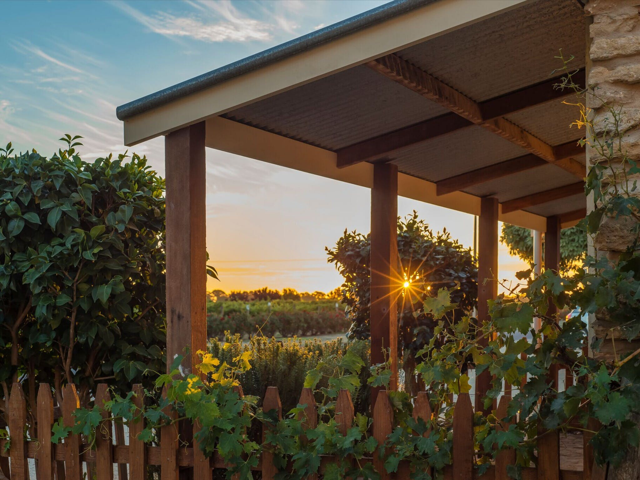 Caf in the Vines - Restaurants Sydney