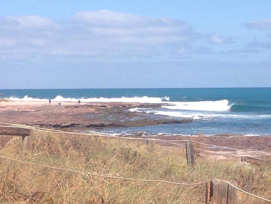 Bean drifting - Restaurants Sydney